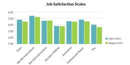 Cottage Health Nursing Job Satisfaction Table